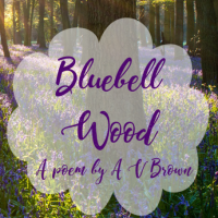 Bluebell Wood (a mini poem)
