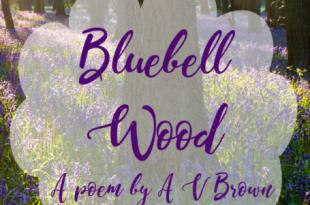 Bluebell Wood (a mini poem)