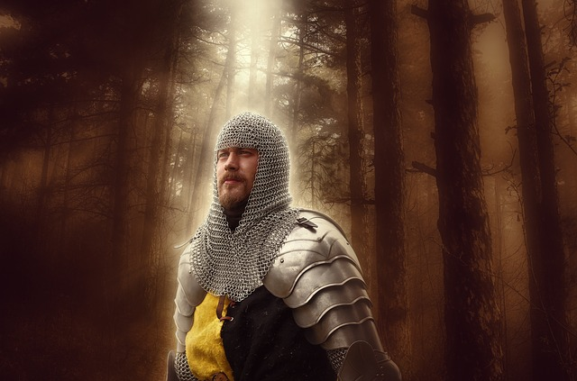 a heroic knight in armour