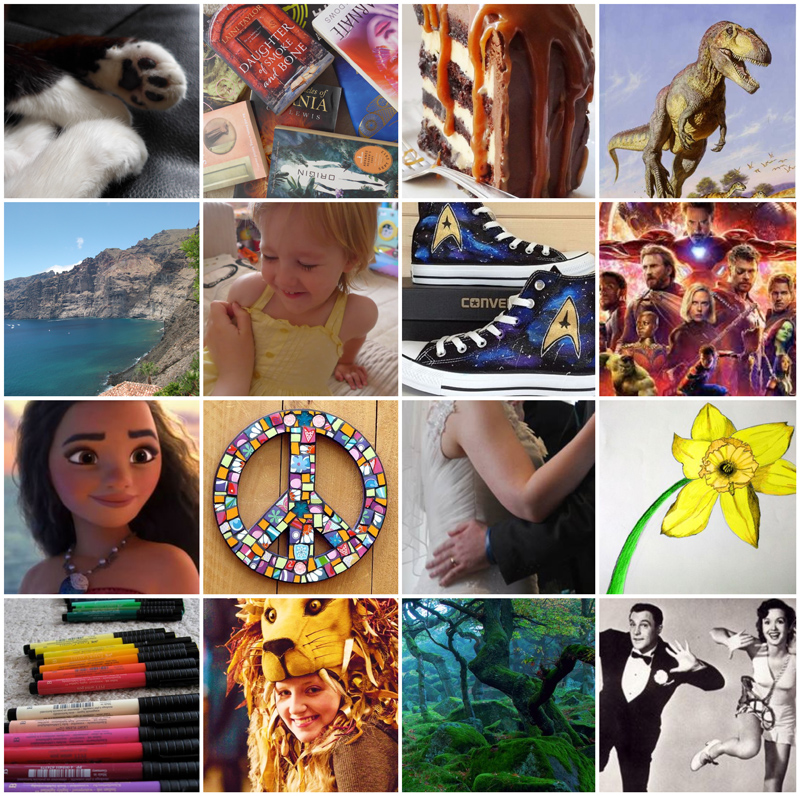 #ThursdayAesthetic for aspiring author A V Brown, a collage of all her favourite things including cats, books, cake, dinosaurs, her family, star trek, disney, art, harry potter, nature and musicals.